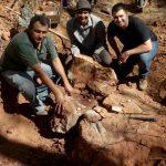 Fóssil no campo de escavação, Cledinei Ap. Francisco, Jose Augusto Bugarelli e André Giacherini.