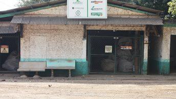 Monte Alto destina 100% das embalagens de agrotóxicos para reaproveitamento consciente