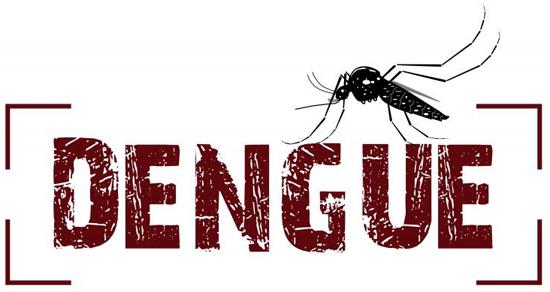 Monte Alto confirma dois casos de dengue