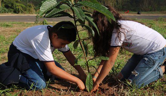 'Dia da Árvore' leva crianças a plantio de mudas no São Miguel