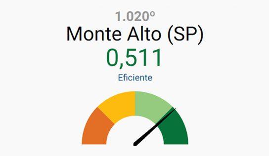 Em ranking nacional, Monte Alto é revelado como município eficiente