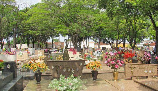 Dia de Finados leva milhares de pessoas ao Cemitério de Monte Alto
