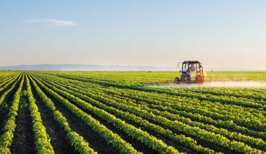 Produtores rurais devem entregar os talões de notas fiscais no ICMS