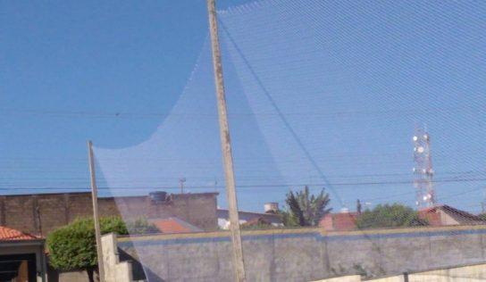 Campo do Vera Cruz ganha novas redes de proteção