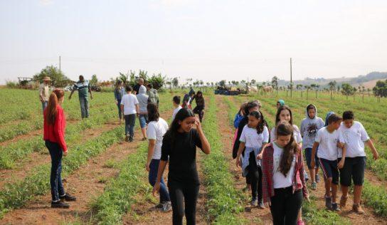 """Alunos da EMEB """"Rita"""" visitam propriedade rural"""