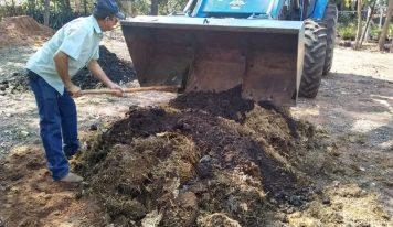 Resíduos de poda e limpeza urbana são transformados em compostagem