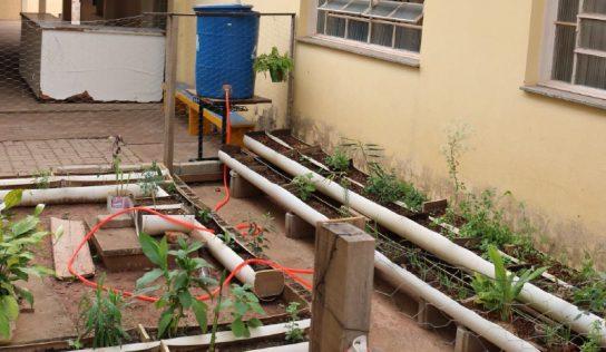 Com ações práticas, escolas do município levam o tema 'sustentabilidade' às crianças