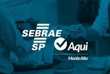 Sebrae-SP lança plataforma para ajudar micro e pequenos empreendedores