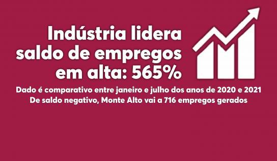 Monte Alto: Indústria lidera saldo de empregos em alta: 565%